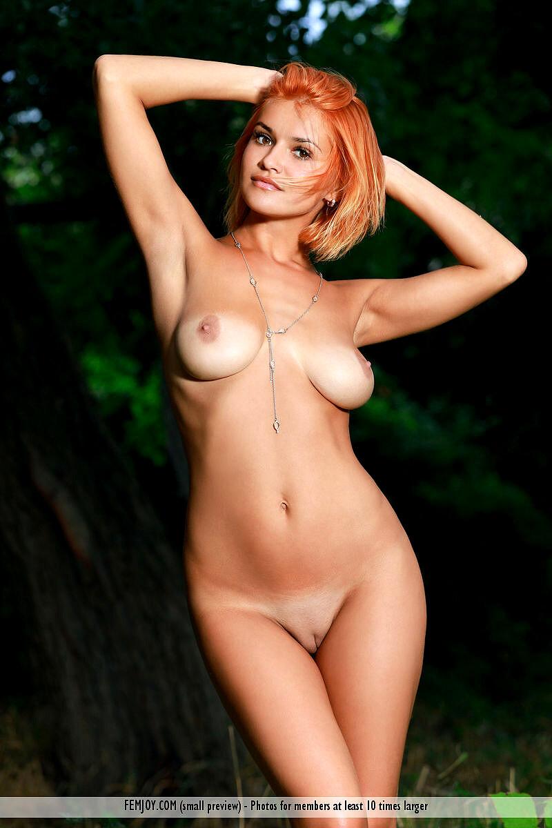 Femjoy Dina P Wild Porn Torrent