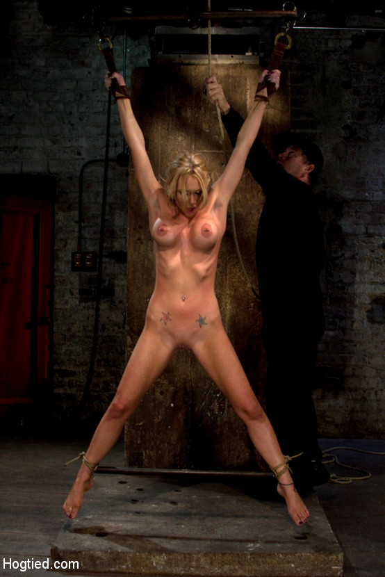 Bdsm Suspension Whipping