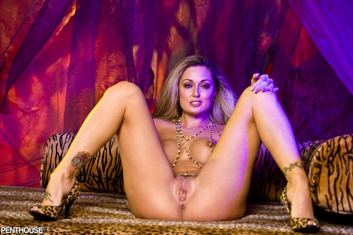 Dpenthouse Pet Collection Melissa Jacobs Cyberskin Puss