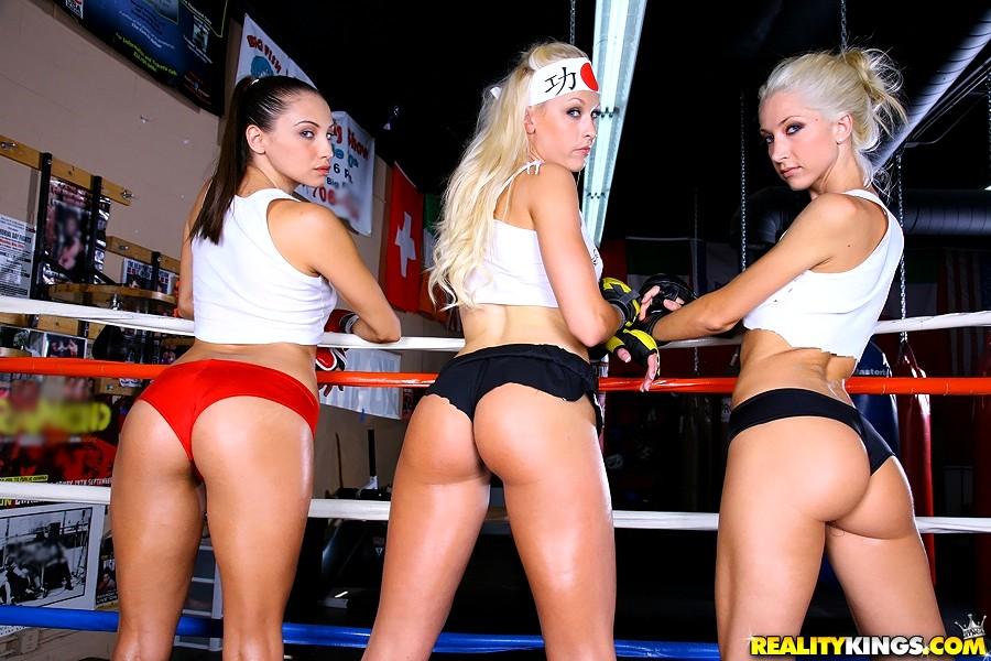 Boxer for sale in cavan