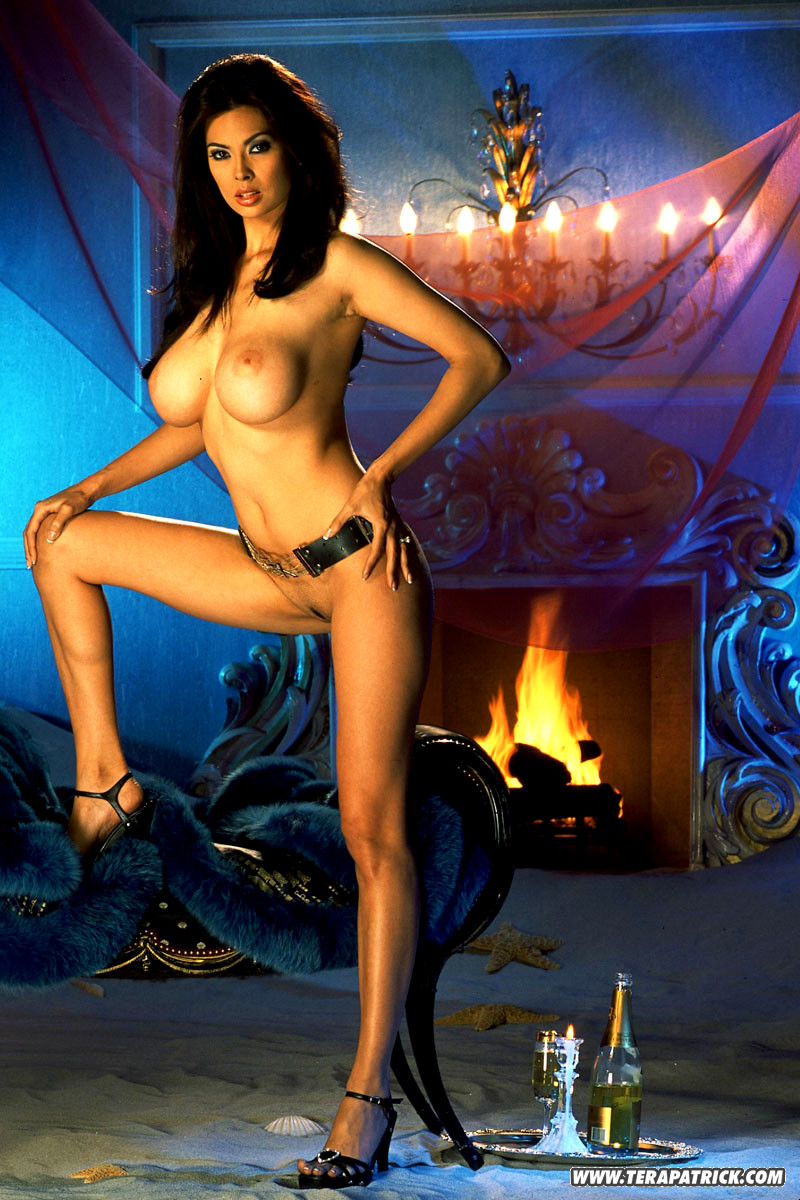 Hot sex scene by tera patrick